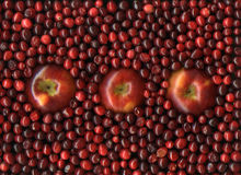 Apples and cranberries Royalty Free Stock Photography