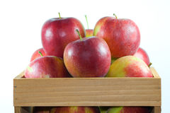 Apples in crate. Royalty Free Stock Photo