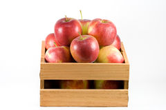 Apples in a crate. A horizontal picture of red and green Early Blaze apples in a small wooden crate on a white background Royalty Free Stock Photos
