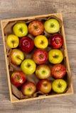 apples crate organic Εκλεκτική εστίαση Στοκ Φωτογραφίες