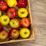 apples crate organic Εκλεκτική εστίαση Στοκ εικόνα με δικαίωμα ελεύθερης χρήσης
