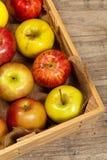 apples crate organic Εκλεκτική εστίαση Στοκ Εικόνες