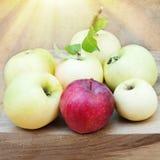 apples crate organic τρόφιμα υγιή Στοκ Εικόνες