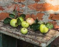 apples crate organic Φρέσκος στη φύση Στοκ εικόνα με δικαίωμα ελεύθερης χρήσης