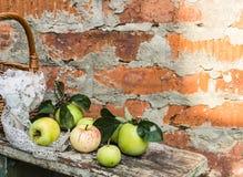 apples crate organic Φρέσκος στη φύση Στοκ Εικόνες