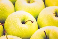 apples crate organic Στοκ Φωτογραφία