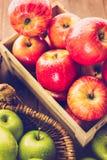 apples crate organic Στοκ Φωτογραφίες
