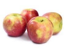 apples crate organic Στοκ εικόνα με δικαίωμα ελεύθερης χρήσης