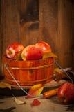 apples crate organic Στοκ φωτογραφίες με δικαίωμα ελεύθερης χρήσης