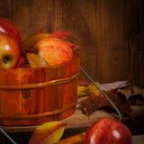 apples crate organic Στοκ Εικόνες