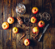 Apples with Different Spices. Royalty Free Stock Photography