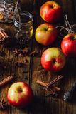 Apples with Different Spices. Stock Photo