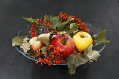 Apples and dried bunches of rowan. Royalty Free Stock Photo