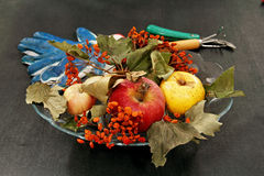 Apples and dried bunches of rowan. Royalty Free Stock Photography