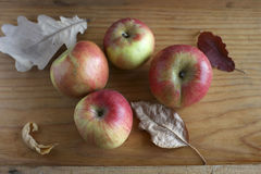 Apples and dried leaves. Apples and dry leaves on a wooden background royalty free stock photo