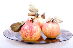 Apples with dry leaves Stock Image