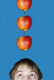 Apples falling on head. Of the boy Royalty Free Stock Images
