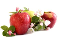Apples and flowers Royalty Free Stock Photos