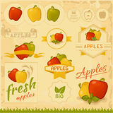Apples. Food fruits, product label packaging design Stock Images