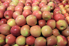 Apples in food store. Apples on a stall in food store Royalty Free Stock Photos