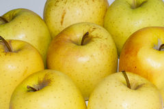 Apples. Foreground of apples on table Royalty Free Stock Photography