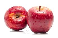 apples fresh 免版税库存照片