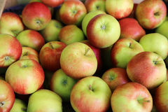 Apples. Fresh Apples on Farmers market Royalty Free Stock Images