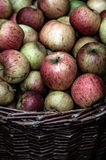 Apples. Fresh apples stored in a basket Royalty Free Stock Image