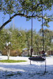 Apples on frozen swing Stock Photos