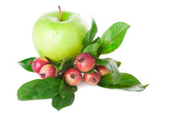 Apples fruit Royalty Free Stock Image