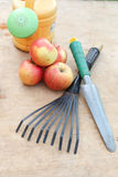 Apples and garden tools Stock Image