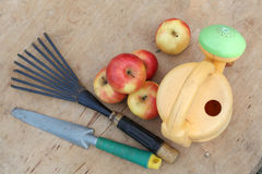 Apples and garden tools Stock Photography