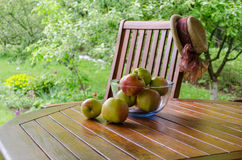 Apples in glass dish on bower table in garden Royalty Free Stock Photography