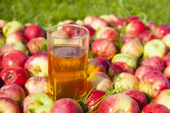 Apples with a glass of juice Stock Image
