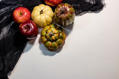 Apples and goards against clothe. Apples and garlic on a white background Royalty Free Stock Photo