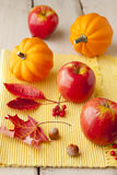 Apples and golden acorn  squash on wood table Stock Photography
