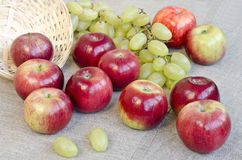Apples and grapes Royalty Free Stock Photography