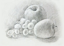 Apples, grapes, peaсh. Pencil drawing Royalty Free Stock Photography