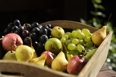 Apples grapes and pears Royalty Free Stock Photo