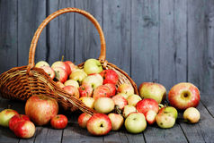Apples on gray wooden background Stock Image