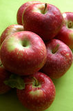 Apples on green Royalty Free Stock Photography