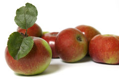 Apples with green leafs Stock Photos
