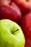 Apples in green and red Royalty Free Stock Images