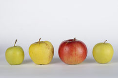 Apples. Green, red apples on white background Royalty Free Stock Images