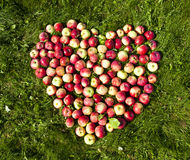 Apples on the ground in the form of heart Royalty Free Stock Photography