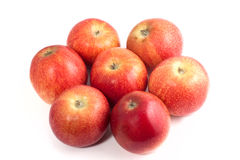 Apples group Stock Photography