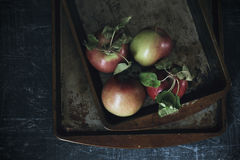 Apples with grunge background. In dark food photography style Stock Photos
