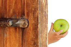 Apples in the hands of a child. Green apple in the hand of the child at the door Stock Photo