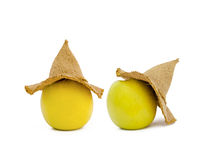 Apples in a hat Royalty Free Stock Images