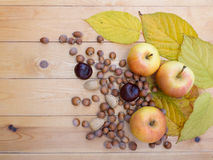 Apples, hazelnuts, chestnut, almonds and fall leaves Stock Image